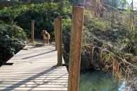 de ruta por la perenxisa... cruzando el puente