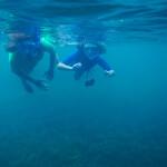 underwater_DSC0150_18 mm_17-08-12_9-52 a.m.